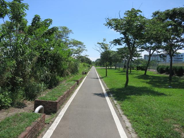 IMG_0239.JPG - 107.06.17-大漢溪左右岸自行車道O行騎