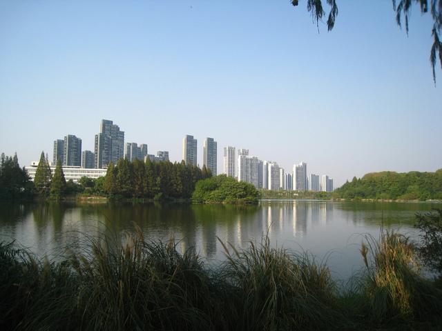 IMG_0156.JPG - 107.10.06-武漢市~東湖綠道