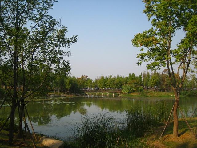 IMG_0171.JPG - 107.10.06-武漢市~東湖綠道
