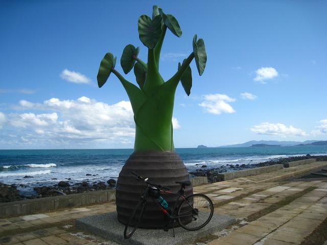 IMG_0141.JPG - 107.01.14-單車北海岸自行車道之旅
