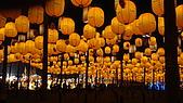 2008台灣燈會台南科學園區-01:DSC00313.JPG