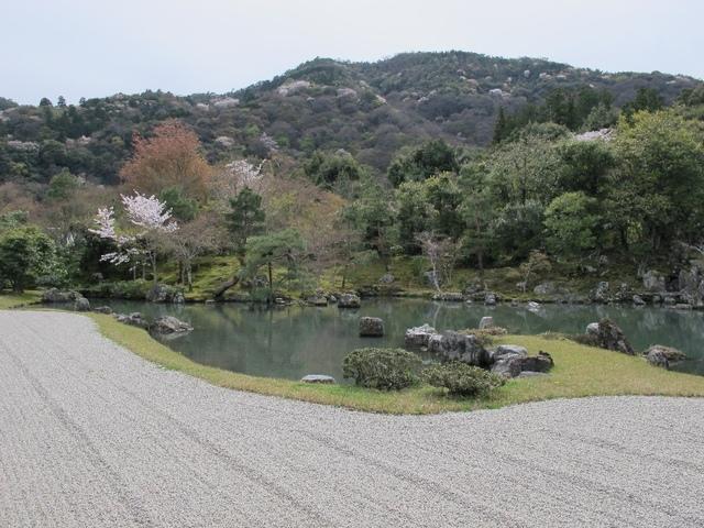 關西賞櫻33.jpg - Japan