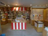日本27天遊(在奈良的日子):遊中川 奈良三条店-第1張.JPG