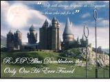 Harry  Potter:2d5b56120e3dcb28[1].jpg