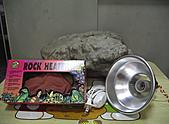 DIY假岩:IMGP3630.JPG