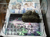 DIY半水景澤龜飼養缸:2呎半水景缸1.jpg