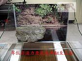 DIY半水景澤龜飼養缸:2呎半水景缸2.jpg