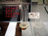DIY半水景澤龜飼養缸:2呎半水景缸3.jpg