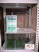 DIY半水景澤龜飼養缸:2呎半水景缸8.jpg