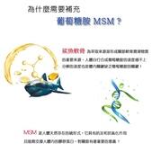 葡萄糖胺+MSM:3.jpg