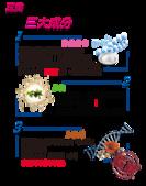 多醣體胜肽膠原蛋白粉:4.png
