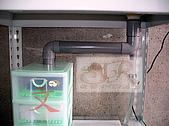 DIY半水景澤龜飼養缸:2呎半水景缸12.jpg