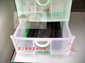 DIY半水景澤龜飼養缸:2呎半水景缸16.jpg