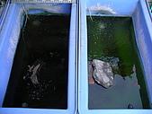 爬蟲:沒有過濾設備,夏天一星期換兩次水,冬天每星期換1次水.jpg