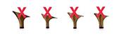 2016博嘉里排舞班秋季班開課:shoes_no_s.jpg
