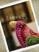 彩色鳥:20131127.jpg