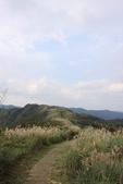 山行三年:桃源谷灣頭坑山 045.JPG
