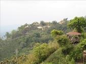2009年03月22日 月光森林:1895942499.jpg