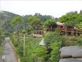 2009年03月22日 月光森林:1895942500.jpg