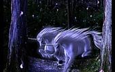 獨角獸 飛馬 圖片收集:2287P.jpg