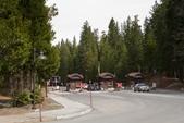 Yosemite National Park:IMG_2466.jpg