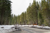 Yosemite National Park:IMG_2485.jpg