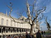 土耳其之旅 2013/3/20~3/30:IMG_2244藍色清真寺.JPG