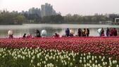 中國上海自由行 2016/3/3~3/15:IMAG5259.jpg