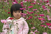 2010 0410 花田:IMG_8517.jpg