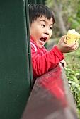 2011 0201 台北 動物園:IMG_9721.jpg