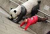 2011 0201 台北 動物園:IMG_9370.jpg