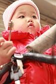 2010 0429     腳踏車 4:IMG_1162.jpg