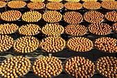 2010 1101 新埔 柿餅:IMG_3822.jpg
