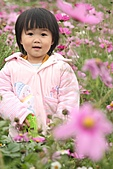 2010 0410 花田:IMG_8536.jpg