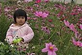 2010 0410 花田:IMG_8513.jpg