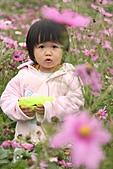 2010 0410 花田:IMG_8539.jpg