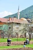 2018歐巴自駕行~普羅夫迪夫Plovdiv(保加利亞Bulgaria):DSC_0026.JPG