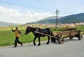 2018歐巴自駕行~普羅夫迪夫Plovdiv(保加利亞Bulgaria):DSC_0031.JPG