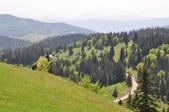 2018歐巴自駕行~蘇恰瓦Suceava(羅馬尼亞) :