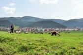 2018歐巴自駕行~普羅夫迪夫Plovdiv(保加利亞Bulgaria):DSC_0035.JPG