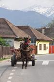 2018歐巴自駕行~Transfagarasan(羅馬尼亞):DSC_0046.JPG