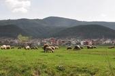 2018歐巴自駕行~普羅夫迪夫Plovdiv(保加利亞Bulgaria):DSC_0034.JPG