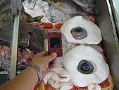 2009 永不放棄--洄瀾極限挑戰200K:這2顆大大眼睛是「曼波魚」的雙眸~~