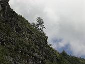 97阿里山之旅-3:22.JPG