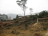 98單騎再戰熊空山:原來有人申請伐木