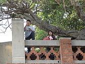 98臺南安平古堡:一臉呆呆的傻樣