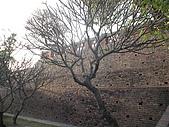 98臺南安平古堡:天氣真的很好