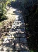 2014-11-22 平溪:平湖森林遊樂區登山步道:IMG_20141122_113459.jpg