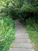 2014-09-08 鼻頭角步道:IMG_20140908_113754.jpg