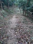 2014-12-20 新竹:迴龍步道 :IMG_20141220_121159.jpg
